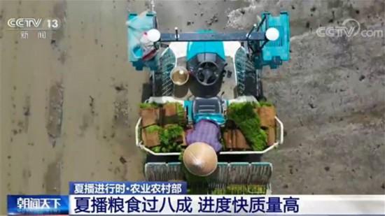 农业农村部:夏播粮食过八成 进度快质量高