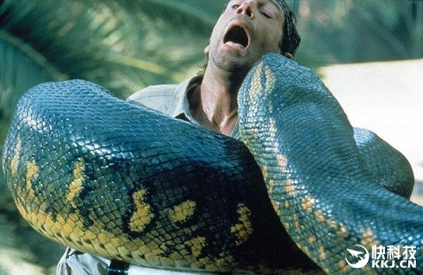 恐怖:男子放生巨蟒 结果半夜竟被缠绕脖子